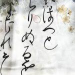 Japanse kimono bloem polyester wit