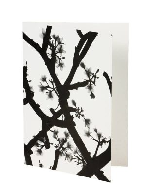Ansichtkaart Blossom 8