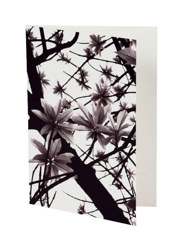 Ansichtkaart Green Leaves 3