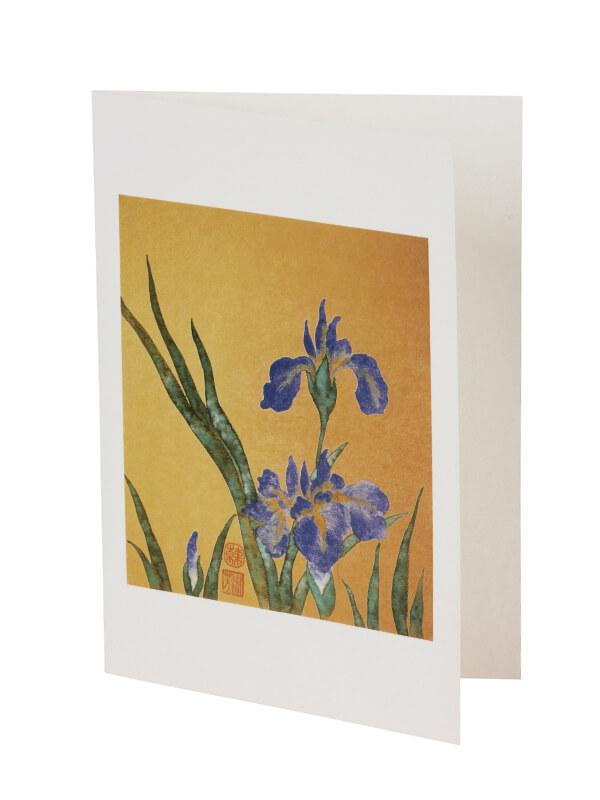 Ansichtkaart Iris