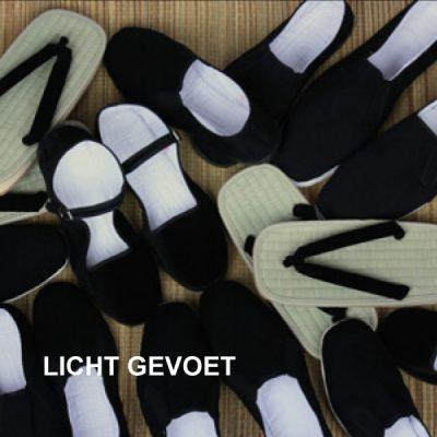 Licht-gevoe-final