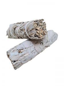 Witte Salie Smudge Stick Medium