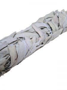 Witte Salie Smudge Stick Large detail